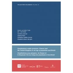 Constitutions under pressure. Constitutions sous pression - E-livre