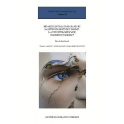 E-Livre - Réparer les violations graves et massives des droits de l'homme : La Cour interaméricaine, pionnière et modèle ?
