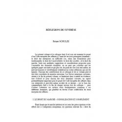 Réflexions de synthèse - SCHULZE