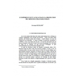 L'expérience d'un avocat dans la protection des mineurs étrangers isolés - RUDLOFF